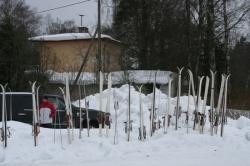 Spordipäev talv 2010